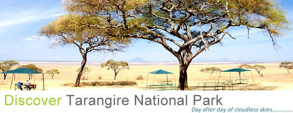 tarangire_national_park_tanzania