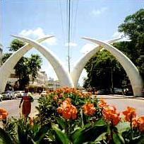 tusks_mombasa